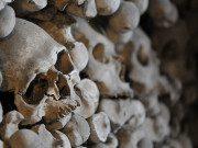 Bonehouse by Tscherno