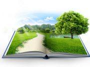 shutterstock_book