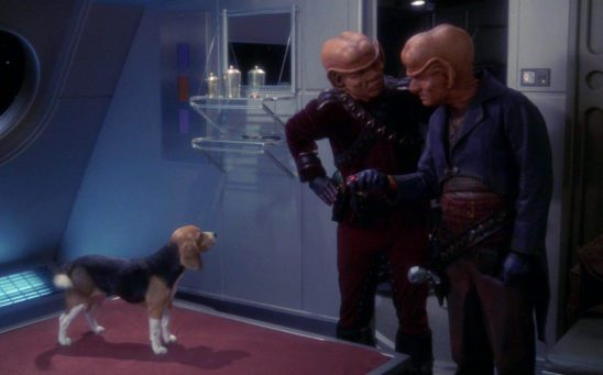 The Ferengi are really wondering why Archer has a dog on this ship.