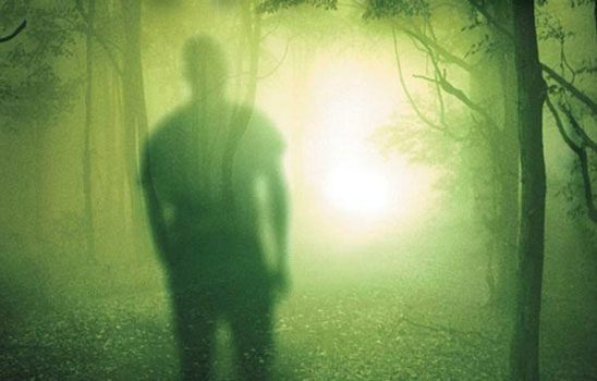 Shadow of person in green glowing woods