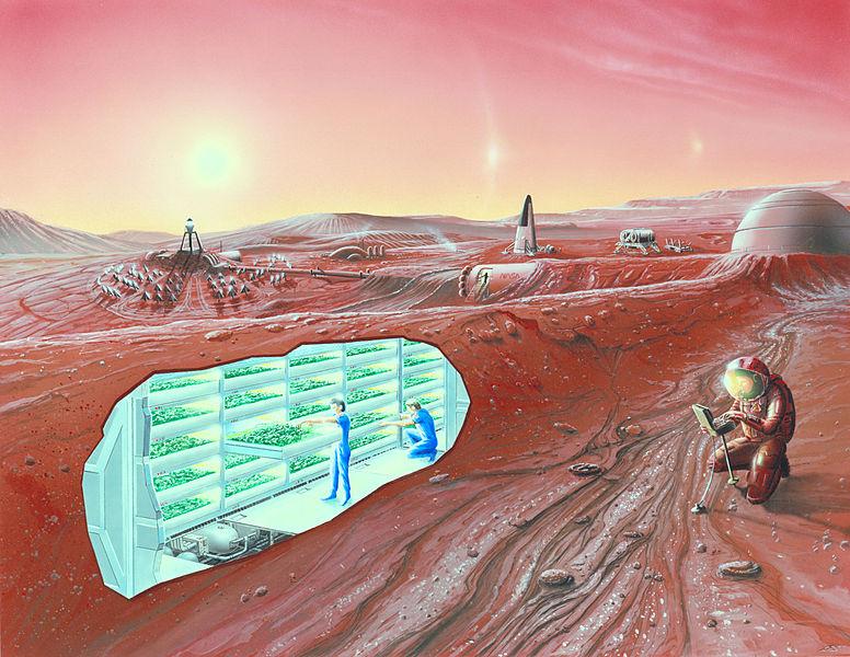 Five Plausible Scenarios for Planetary Evacuation