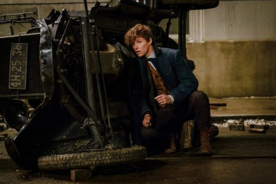 Newt hiding behind a turned over car.