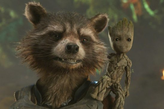 Little Groot standing on Rocket's shoulder.
