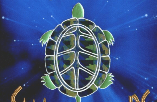 A stylized tortoise from the cover art of Small Gods.