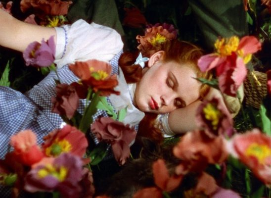 Dorothy sleeping among poppy flowers.