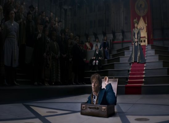 Newt emerging from his case in the Wizard Congress chamber.