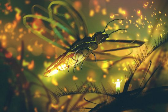 A tiny glowing person stands on a leaf below a giant firefly