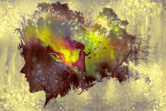 A painting with the profile of a face and abstract imagery of a forest and a woman with birds